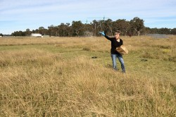 Dr Sally Power applying nutrients to a plot in the Yarramundi Nutrient Network site in Australia.
