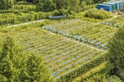 The UFZ researchers based in Leipzig use an experimental facility consisting of 47 gutters in order to quantify the effects of agricultural chemicals on lifelike ecosystems and to validate their mechanistic models  for risk assessment.