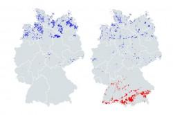 Optimale Verteilung von Solar- (rot) und Windenergieanlagen (blau). Links ohne, rechts mit Berücksichtigung von Netzausbaukosten. Foto: Martin Lange / UFZ