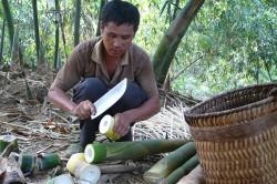 Ein Farmer im Landkreis Tianlin (China) bearbeitet frisch geerntete Bambus-Sprossen. Foto: Nick Hogarth, CIFOR