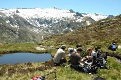 Monitoring von Amphibienpopulationen und deren Krankheitserregern in  den französischen Pyrenäen. Im Hintergrund ist der Pic Rouge zu  erkennen. Foto: Dirk Schmeller