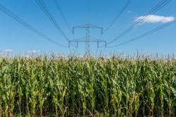 Drop-in Kraftstoff aus Biomasse und elektrischer Energie.