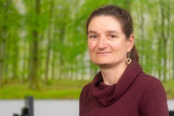 Dr Sabine König Photo: André Künzelmann / UFZ