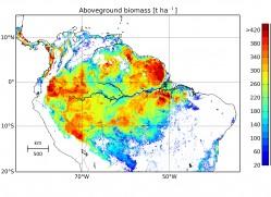 Waldbiomasse im Amazonas im Jahre 2005. Durch die Verknüpfung des Waldmodells FORMIND mit Daten des Satelliten ICESat konnte eine detaillierte Biomassenkarte erstellt werden. Insgesamt waren demnach 76 Milliarden Tonnen Kohlenstoff im Amazonas-Regenwald gebunden. Regionen mit einer roten Einfärbung zeigen Gebiete mit besonders viel Biomasse. Foto: aus Veröffentlichung Rödig et al., Global Ecol Biogeogr. 2017