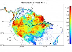 Forest biomass in the Amazon in 2005. Combining the FORMIND forest model with data from the ICESat satellite made it possible to create a detailed biomass map. According to this map, 76 billion tonnes of carbon is stored in the Amazon forest. The red colouring shows areas with a particularly large amount of biomass. Photo: Rödig et al., Global Ecol Biogeogr. 2017