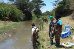 Feldversuche in Kenia. Deutsche und kenianische Wissenschaftler haben 48 Fließgewässer auf Pestizidbelastung, Zusammensetzung der Lebensgemeinschaften und Schneckenvorkommen untersucht. Foto: UFZ