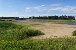 Elbe bei Schönberg im Juni 2018