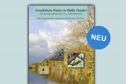 Geschützte Natur in Halle (Saale). Eine Bestandsaufnahme der Tier- und Pflanzenwelt. Verlag Natur+Text
