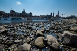 Low water at the river Elbe in Dresden (Germany) in 2018 Photo: André Künzelmann / UFZ