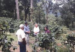 """Vertreter des nationalen Verbands der Kaffee-Produzenten in Honduras """"IHCafé"""" erklären das Produktionssystem nahe des Nationalparks. Foto: Yves Zinngrebe"""