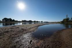 Niedrigwasser der Elbe bei Barby Foto: André Künzelmann / UFZ