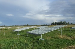 Untersuchungsfläche an der Havel, eine von weltweit 72 Freilandexperimenten, deren Daten in die Synthese eingeflossen sind.