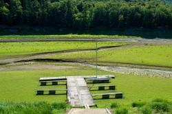 Die Edertalsperre (Hessen) im Jahr 2019: Trockengefallene Gewässerbereiche setzen erheblich mehr Kohlenstoff frei als von Wasser bedeckte Bereiche. Foto: Maik Dobbermann