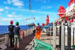 Fang einer großen blauen Plastiktonne im Großen Nordpazifischen Müllstrudel im Rahmen der Expedition SO268/3 mit dem Forschungsschiff SONNE 2019 Foto: Roman Kroke / UFZ